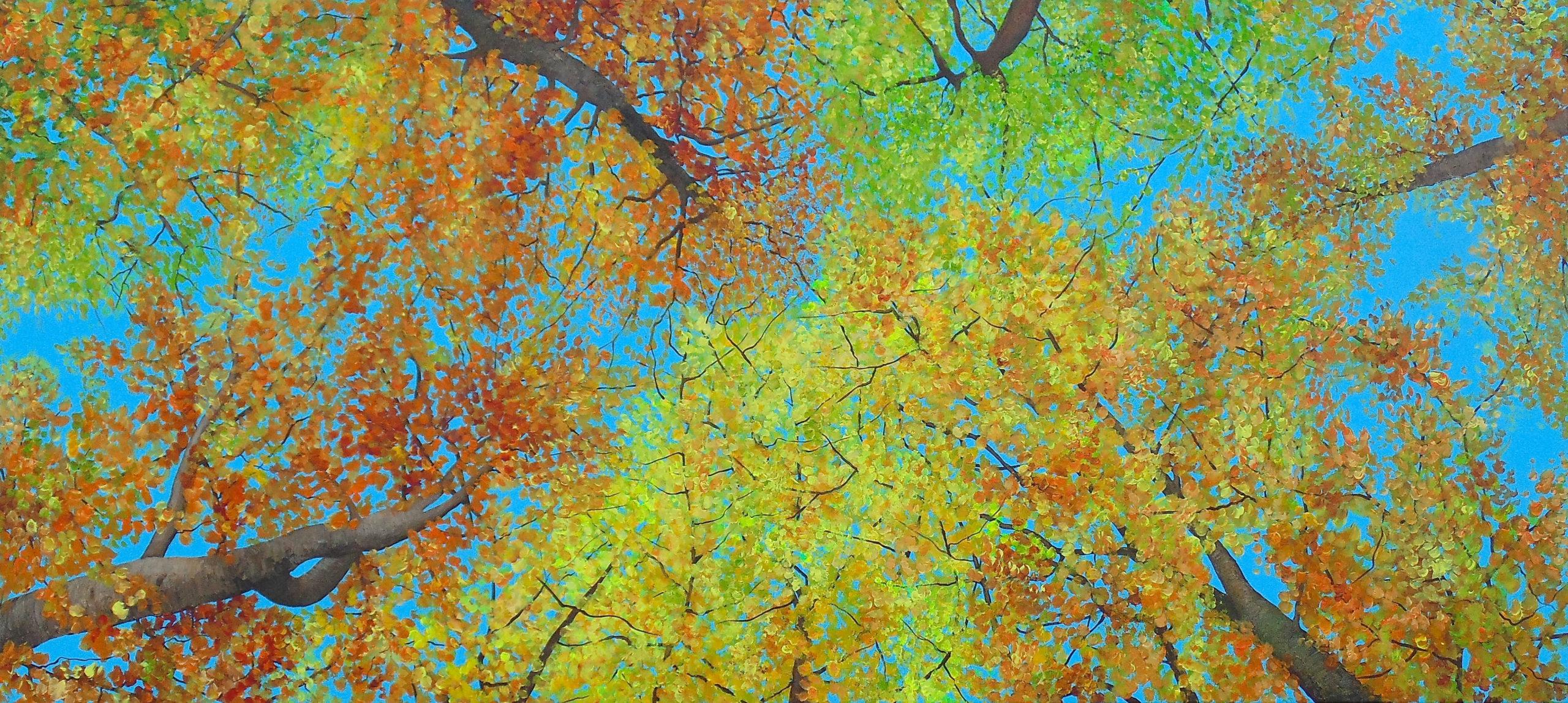 Herbstwald2019